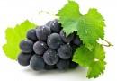 К 2020 году Минсельхоз РФ рассчитывает полностью заместить импортные виноматериалы