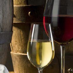 Узкое горлышко: производство вина в России упало до рекордного минимума