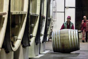 Беззащитное вино: почему власти отменят льготу для российских виноделов